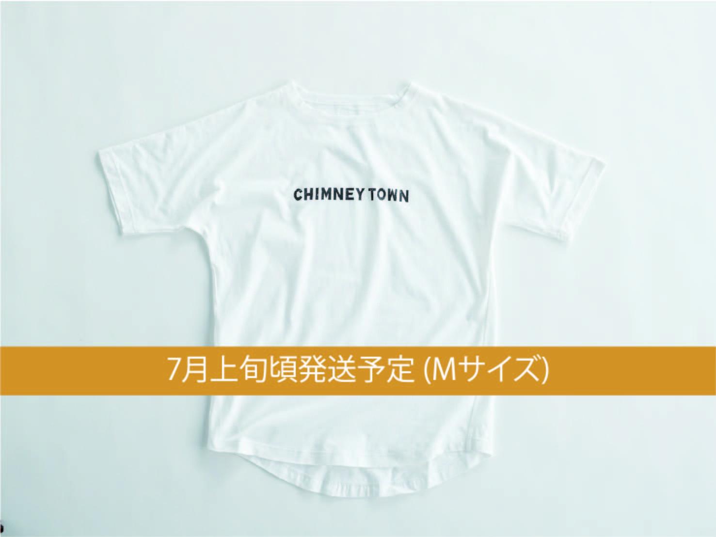 CT-WTM001
